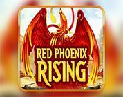 Red Phoenix Rising